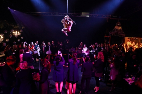 Aerial & Entertainment Options