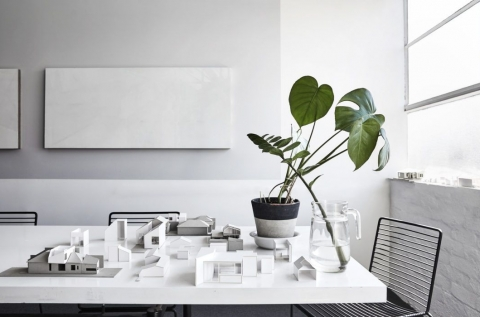 Shared meeting table + plants + light
