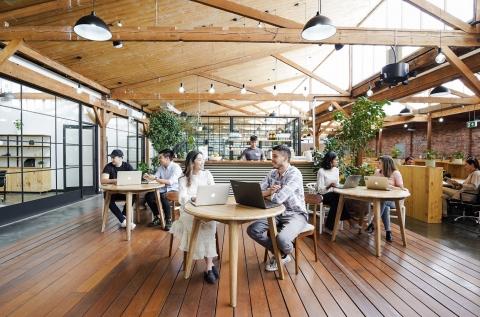 the Hive Café